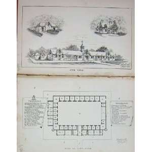 Stud Farm Plan Horses BailyS Magazine Antique 1895