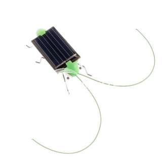 Solar Power Educational Toy Grasshopper Green Science