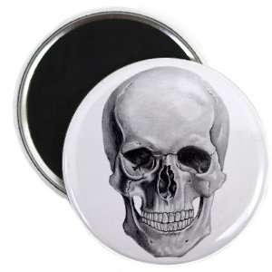 SKULL HEAD Pencil Sketch Art 2.25 inch Fridge Magnet