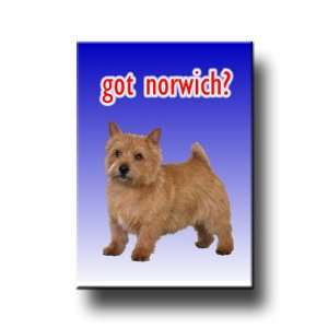 Norwich Terrier Got? Fridge Magnet No 1