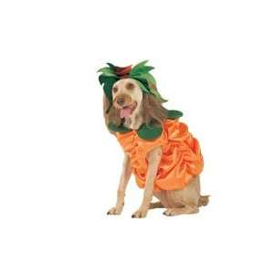 Halloween Dog Costume Satin Pumpkin Patch Dog Costume