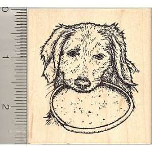 Golden Retriever Dog with Frisbee Rubber Stamp Arts